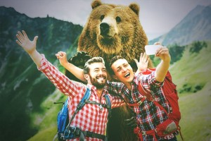 One would think that it's obvious to not take selfies with bears.